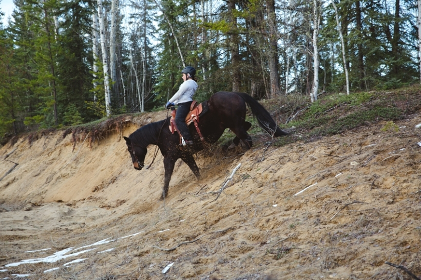 Leaning Tree Trail Rides - May
